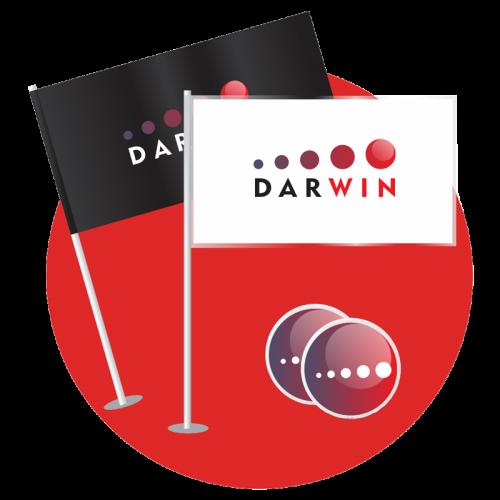 darwin_identity_flags